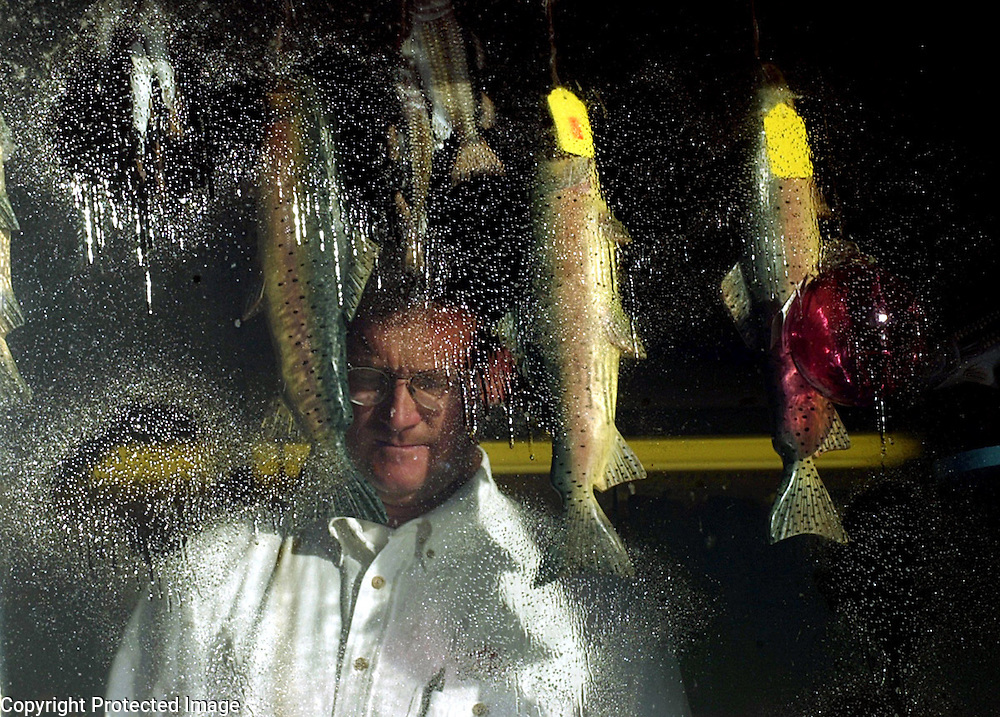 Jerry Poyant, manager of Hy-line Bait and Tackle is seen through the store's window at Hyannis Harbor in Hyannis, MA.  The moisture on the window is from cleaning fluid which Poyant was using to wash the window.