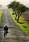 Bicycle in the Country, Czech Republic