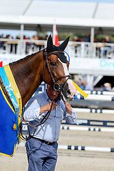 De Winter Jeroen, BEL, Mystic van 'T Hoogeind<br /> World Championships Young Jumping Horses<br /> Lanaken 2018<br /> © Hippo Foto - Julien Counet<br /> 16/09/2018