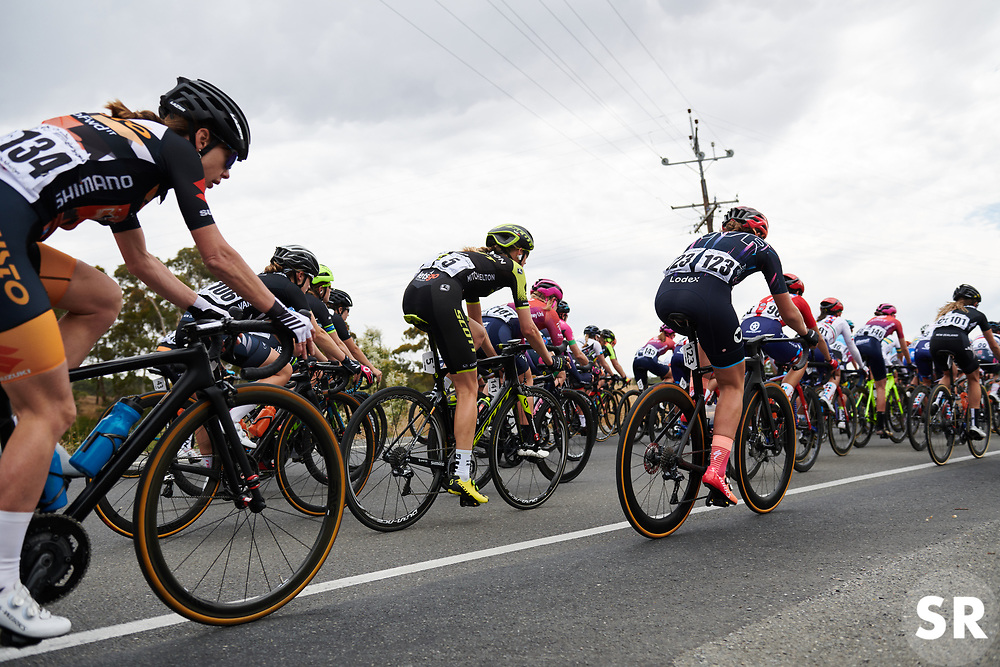 Lucy Kennedy (AUS) in the bunch at Santos Women's Tour Down Under 2019 - Stage 1, a 112.9 km road race from Hahndorf to Birdwood, Australia on January 10, 2019. Photo by Sean Robinson/velofocus.com