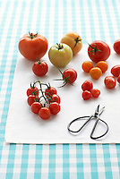 Assorted tomatoes on table