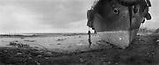 Landschaft bei LHOKNGA. Der Schlepper wurde ueber 200m hinweg an Land gespuelt. Die hohe Welle des Tsunami hat saemtliche Baeume und Palmen wenige Meter ueber dem Boden abrassiert. .Landscape LHOKNGA, ..Landscape at Lhoknga, the Tsunami dropped the boat 200 meters inside the coastarea. Palmtrees are cut down by the wave like cut with a raiserblade.<br /> Murat Tueremis<br /> Germany.<br /> +49-171-5437080.<br /> email: murattueremis@t-online.de