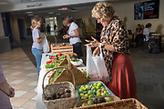 Atrium Cafe, Grover Market, Food Studies