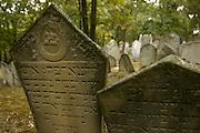 Jewish cemetaries