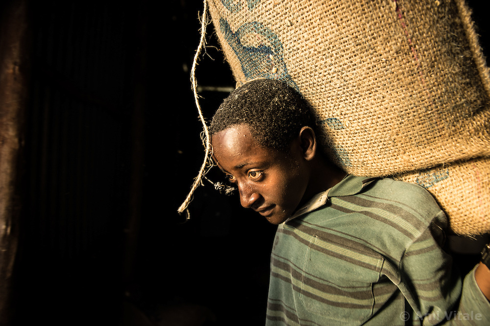 Ethiopians load cofee on trucks on the Teppi plantation in the Kaffa region of Ethiopia.