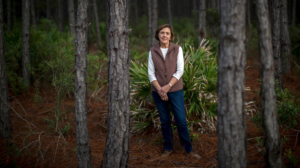 COGDELL, GA - DEC., 8, 2016: Dotty Porter stands in a forest of slash pine trees on the Sessoms Timber Trust property, Thursday, December 8, 2016, in Cogdell, Ga.  (Photo by Stephen B. Morton for Georgia Forestry Magazine)