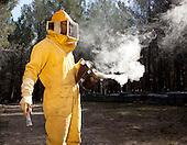Procés de recol·lecta de la mel