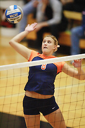 Virginia Cavaliers M Shannon Davis (8).  The Virginia Cavaliers Volleyball Team fell to the Florida State Seminoles three games to none on October 14, 2006 at Memorial Gymnasium in Charlottesville, VA...