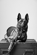 Sonja<br />