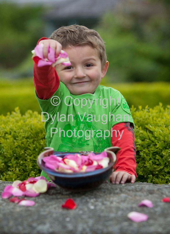 13/5/2009 .Free picture no charge for use.Joseph Briscoe aged 4 from Kilkenny pictured at the announcement in Kilkenny's Butler House today by the Crafts Council of Ireland of it busy craft programme that will feature over the five-day Bloom Festival in the Phoenix Park this June Bank Holiday weekend..Daily craft demonstrations, a dedicated craft retail area, a children's craft programme and the provision of large scale sculptures are amongst the various craft experiences that more than 60 of Ireland,s most talented craft makers will bring to this year's event..Picture Dylan Vaughan