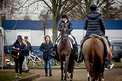 Barbancon Mestre Morgan, ESP, Sir Donnerhall II Old<br /> Jumping Mechelen 2018<br /> © Hippo Foto - Sharon Vandeput<br /> 28/12/18