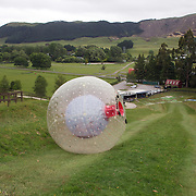 Participants ride down the hill inside a Zorb. The sport of Zorb globe riding was invented in New Zealand and globes are designed, manufactured and tested there, The Zorb globe is an 11 foot high inflatable transparent sphere which you can ride inside. Two feet of air protect you from the ground enabling you to globe ride down hills at high.  Agrodome, Western Rd. Ngongotahaha.  Rotorua, New Zealand,, 11th December 2010 Photo Tim Clayton..