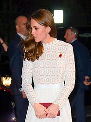 Her Royal Highness The Dutchess of Cambridge arriving at the World Premiere of A Street Cat Named Bob at the Curzon Mayfair on November 3 2016 in London. EXPA Pictures © 2016, PhotoCredit: EXPA/ Avalon/ Famous<br /> <br /> *****ATTENTION - for AUT, SLO, CRO, SRB, BIH, MAZ, SUI only*****
