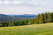 Landschaft Sumava Nationalpark, Wiesen, Wälder, Böhmerwald, Tschechien | landscape, Sumava national park, Bohemian Forest, Czech Republic