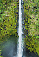 Akaka Falls center section, Hawai'i