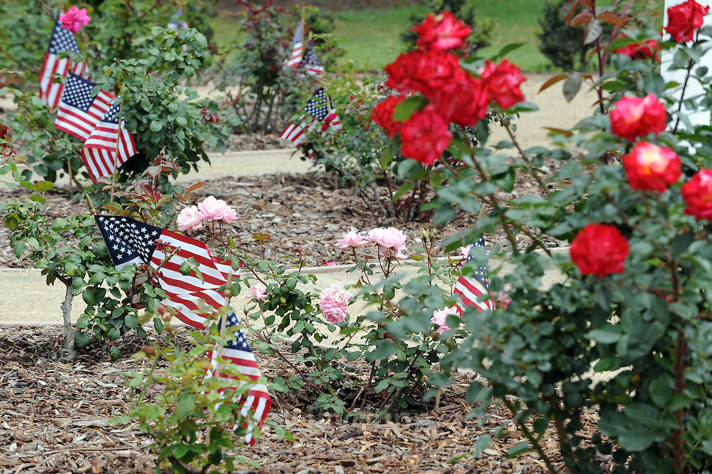 Flags at the World War II Memorial Rose Garden in Salinas, re-dedicated just last year.