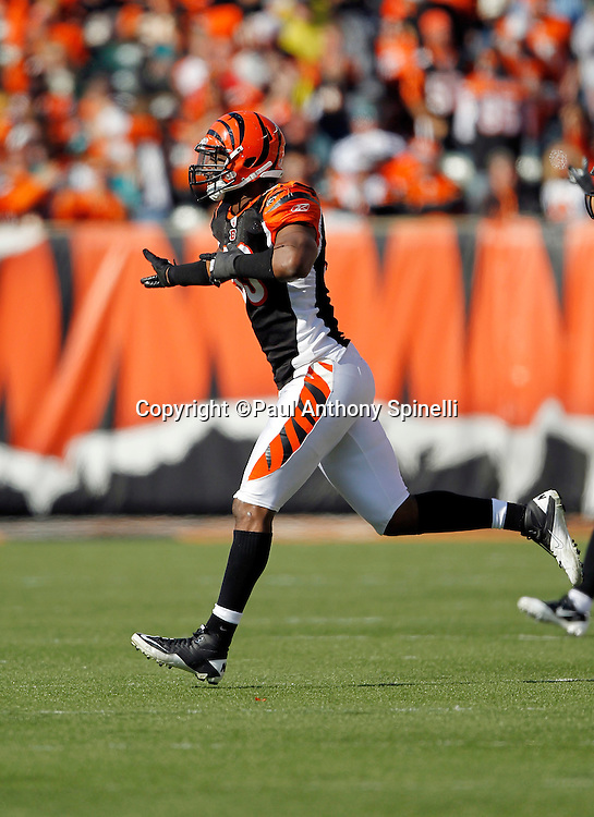 Cincinnati Bengals linebacker Michael Johnson (93) celebrates after recovering a bobbled punt during the NFL week 8 football game against the Miami Dolphins on Sunday, October 31, 2010 in Cincinnati, Ohio. The Dolphins won the game 22-14. (©Paul Anthony Spinelli)