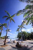 Tropical palm trees provide some welcome shade and atmosphere around the Cairns Esplanade Lagoon in this far north Queensland city in Australia.