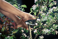 Young woman bare feet in apple tree blossoms artistic springtime closeup