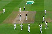 Not out - James Pattinson of Australia thinks he has Joe Root of England caught behind and the umpire gives him out but on review it was shown to have clipped the stumps and the decision was overturned during the International Test Match 2019 match between England and Australia at Edgbaston, Birmingham, United Kingdom on 2 August 2019.