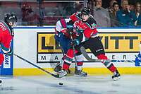 KELOWNA, CANADA - NOVEMBER 14: Jack Cowell #8 of the Kelowna Rockets passes the puck away from the boards against the Edmonton Oil Kings on November 14, 2017 at Prospera Place in Kelowna, British Columbia, Canada.  (Photo by Marissa Baecker/Shoot the Breeze)  *** Local Caption ***