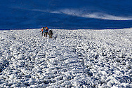 A party of four climbers make their way across the main snow field of Island Peak.