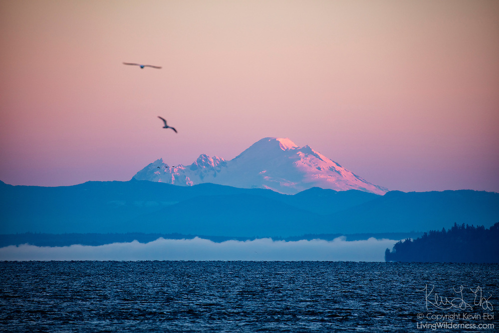 Mount Baker, a 10,781-foot (3,286-meter) volcano in the North Cascades of Washington state, rises above a fog bank and Puget Sound in this view from Edmonds, Washington.