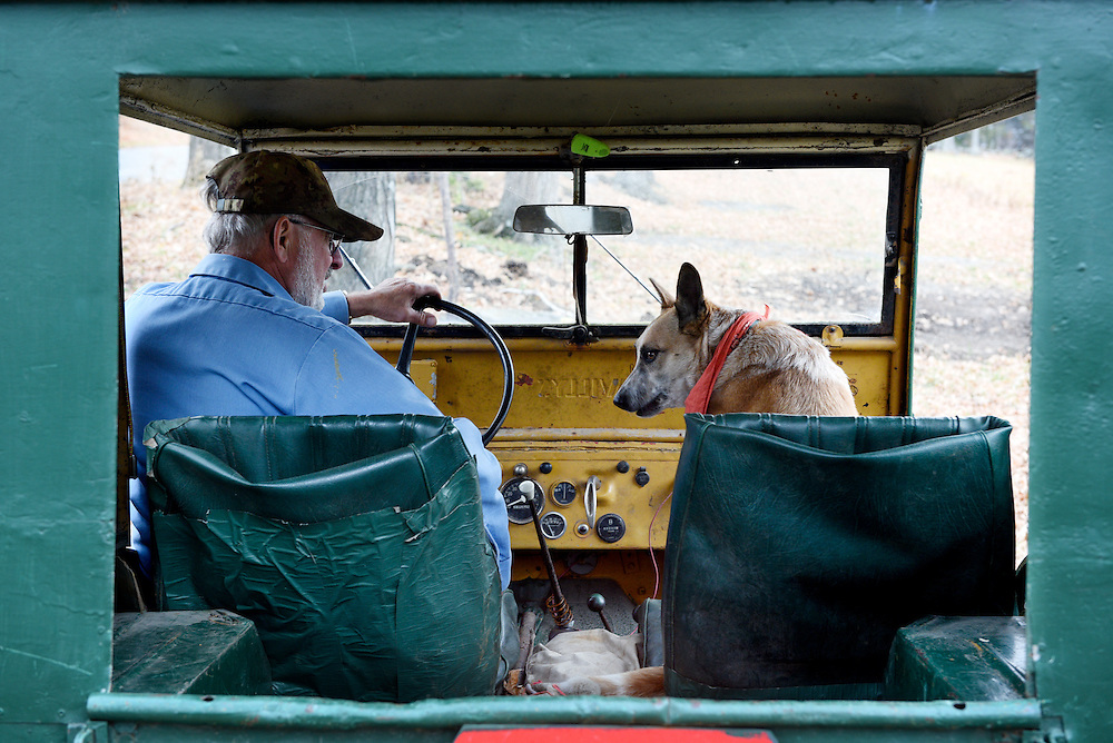 Leo &quot;Joe&quot; LaDouceur climbs into his 1947 Willys Jeep with his Australian Heeler Tasha to drive to a pasture on his 200 acres in Barnard, Vt. Friday, November 6, 2015. LaDouceur feeds his beef cows on grass and hay only, rotating them to new pastures every couple days for fresh feed and to minimize impact on the land.  (Valley News - James M. Patterson)<br />