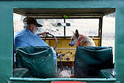 Leo &quot;Joe&quot; LaDouceur climbs into his 1947 Willys Jeep with his Australian Heeler Tasha to drive to a pasture on his 200 acres in Barnard, Vt. Friday, November 6, 2015. LaDouceur feeds his beef cows on grass and hay only, rotating them to new pastures every couple days for fresh feed and to minimize impact on the land.  (Valley News - James M. Patterson)<br /> Copyright &copy; Valley News. May not be reprinted or used online without permission. Send requests to permission@vnews.com.
