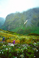Hikers on Mackinnon Pass, Milford Track, New Zealand