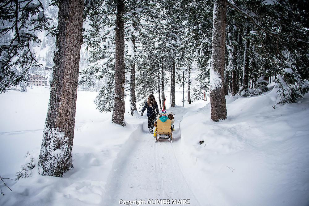 Fondation Barry avec des chiens de traineau St Bernard, le dimanche 28 d&eacute;cembre 2014,<br /> Sortie hivernale avec famille et enfants a Champex lac, sous la neige puis ensuite visite du Mus&eacute;e a Martigny<br /> (PHOTO-GENIC.CH/ OLIVIER MAIRE)