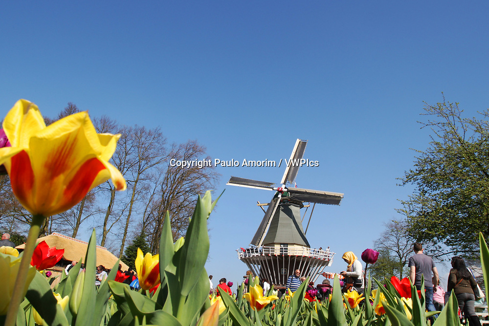 Daily Life - People walking and enjoying near a windmill at Keukenhof floral park on April 4, 2017 in Lisse,Netherlands. Keukenhof known as the Garden of Europe, a spring park with approximately seven million flower bulbs.