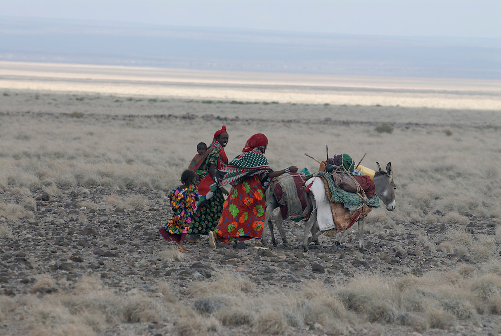 Donkey caravan with Afar bedouins near Lac Abbe