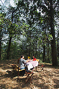 Luxury Picnic in the Forests of Shimla
