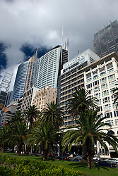 General view of office buildings from The Royal Botanic Gardens, Sydney, Australia