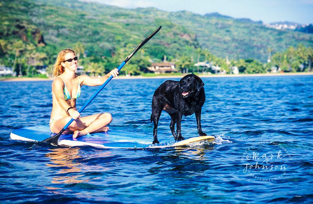 Woman & dog paddling on windsurfer, Oahu, Hawaii