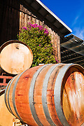 Oak wine barrels at Harmony Cellars, Harmony, California