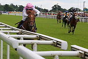 ARCTIC FOX (12) ridden by Carol Bartley and trained by Richard Fahey winning The Queen Mothers Cup over 1m 4f (£20,000)   during the MacMillan Charity Raceday held at York Racecourse, York, United Kingdom on 15 June 2019.