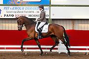 Emmelie Scholtens - Borencio<br /> Horsefood Competitie 2010<br /> © DigiShots
