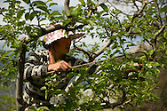 Nanxin (Sichuan) April 18th 2014<br />