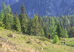THEMENBILD - ein Wanderer auf der Suche nach Orientierung nahe der Neualm in den Schladminger Tauern vorbei, aufgenommen am 4. Juni 2017 in Schladming, Österreich // a hiker on a path near the Neualm on 2017/06/04, Schladming, Austria. EXPA Pictures © 2017, PhotoCredit: EXPA/ Martin Huber