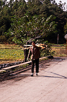 Woman carrying logs along a countryside road in the suburbs of Guilin.