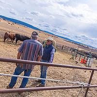 Elgin, Oregon: Glen Tolley in cowboy hat, Bob Mudd in Oregon Trail cap, owner of red barn 541-805-4583