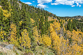 Peak_to_Peak_Aspens