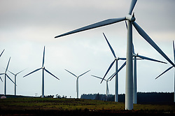 Black Law Windfarm, South Lanarkshire, Scotland<br /> <br /> (c) Andrew Wilson | Edinburgh Elite media