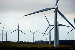 Black Law Windfarm, South Lanarkshire, Scotland<br /> <br /> (c) Andrew Wilson | Edinburgh Elite media
