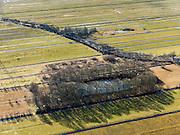 Nederland, Zuid-Holland, Gemeente Bergambacht, 20-02-2012; Krimpenerwaard met Polder Berkenwoude en de eendenkooi Kooilust. De langwerpige verkaveling is ontstaan door het ontginnen van het veen vanuit de dorpen langs de rivieren Lek en Hollandsche IJssel (ontginningen met vrije opstreek). De achtergrens van de verkavelingen wordt gevormd door  Ouderkerkse Landscheiding (de houtkade, diagonaal met lichte kromming). .Polder Berkenwoude in the Krimpenerwaard with decoy. The land division (in lots) has been created by the reclamation of peat bog starting from the villages along the rivers Lek and Hollandsche IJssel..luchtfoto (toeslag), aerial photo (additional fee required);.copyright foto/photo Siebe Swart.