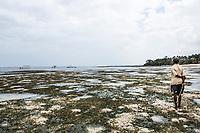 Extreme low tides on the East African Coastline, Mombasa, Kenya