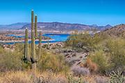 Overlooking Lake Pleasant, Arizona, USA