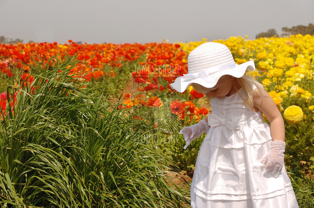 Young girl in a white dress exploring in a field of flowers